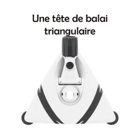 Tête de Balai Triangulaire