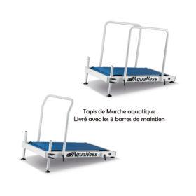 tapis de marche aquatique avec barres de maintien